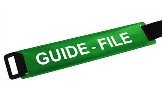 Brassard GUIDE-FILE fond vert texte blanc